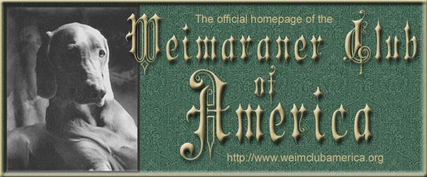 Weimaraner Club of America Home Page